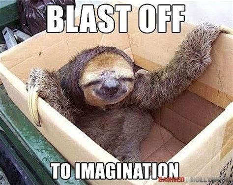 Sloth Meme Pictures - image gallery sloth fun