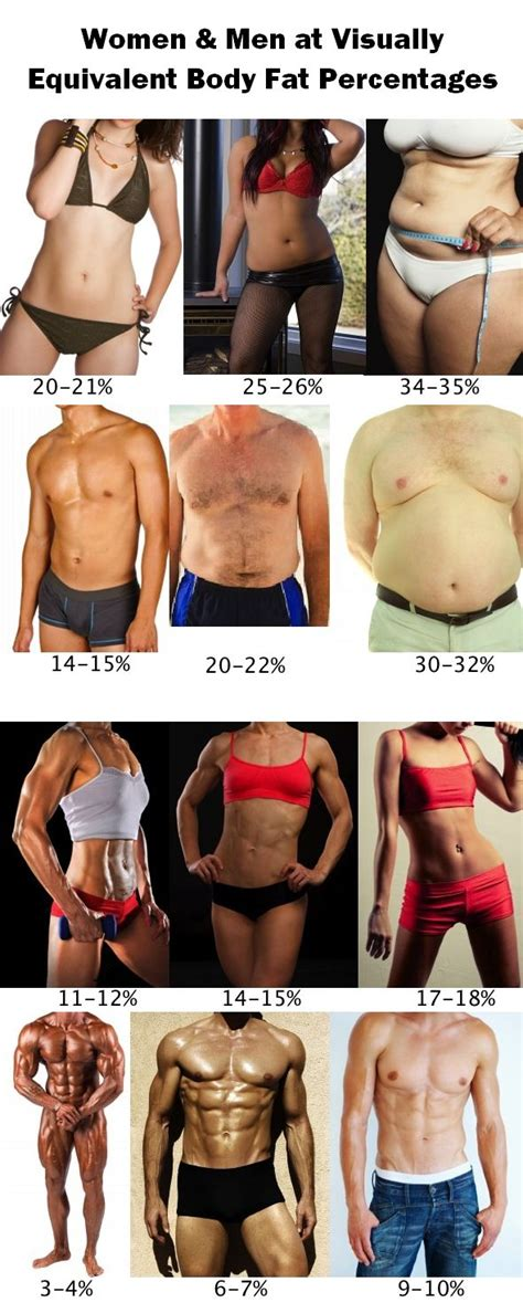 women men  visually equivalent body fat percentages throw   scale enjoy  smarter