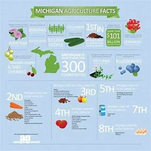 251 best images about Michigan on Pinterest   Mackinac ...