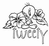 Coloring Pages Bird Tweety sketch template