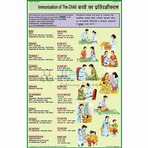 Immunization Chart India  Immunization Chart Manufacturer  Immunization Chart Suppliers And