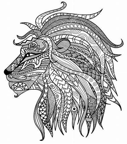 Lion Coloring Pages Colouring Mandala Tiger Illustration