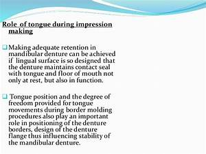Tongue Development  Applied Anatomy And Prosthetic