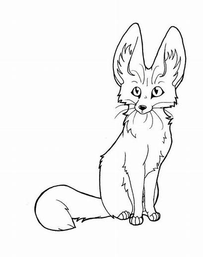 Fennec Line Fox Coloring Template Pages Clipart