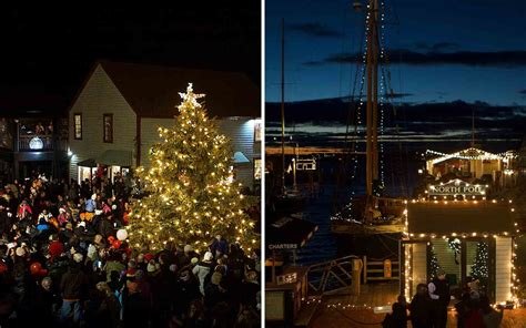 best christmas tree farm ri the best trees in the united states travel leisure