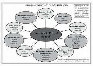 Prof  Andr U00e9 Alencar  Diagrama Com Os Tipos De Constitui U00c7 U00c3o