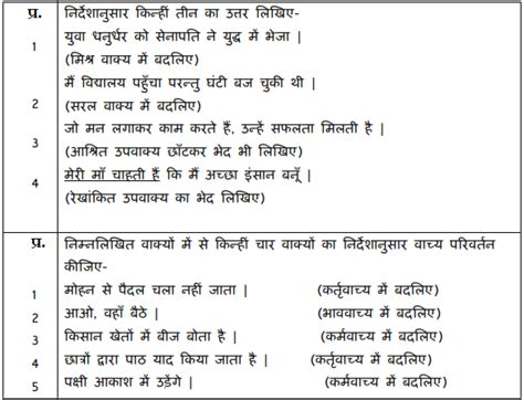 cbse sample paper  class  hindi