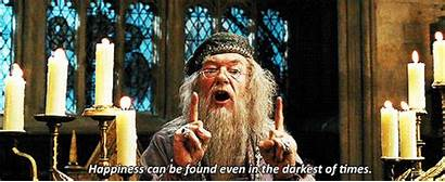 Dumbledore Potter Harry Albus Hogwarts Silente Gifs