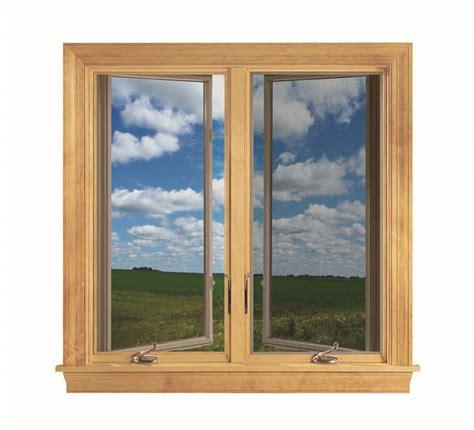 choosing   replacement window screen