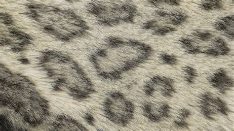 Animal Fur Wallpaper - fur wallpaper wallpapersafari