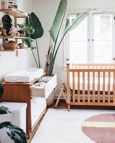 ideas  pull  tropical decor   nursery digsdigs