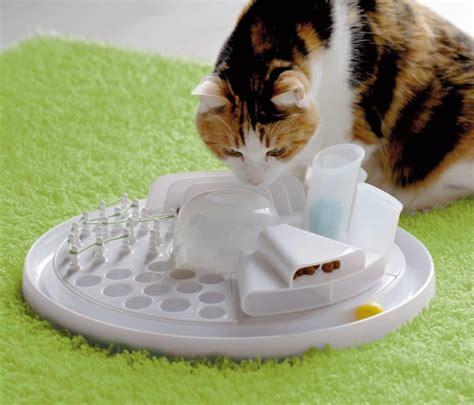 beschaeftigungsspielzeug katzen katzenspielzeug