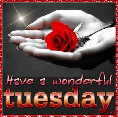 Tuesday Wonderful Code