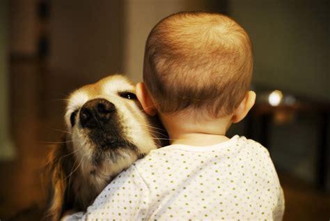 feel  love  kids giving hugs   dogs