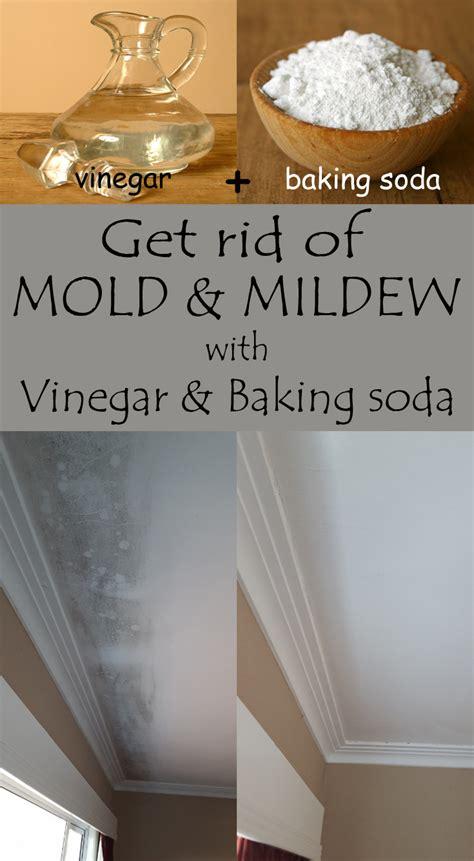 rid  mold  mildew  vinegar  baking soda