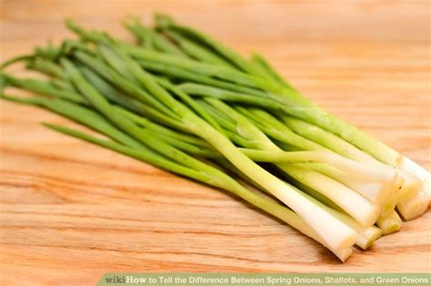 how do you cut green onions how to tell the difference between spring onions shallots and green onions