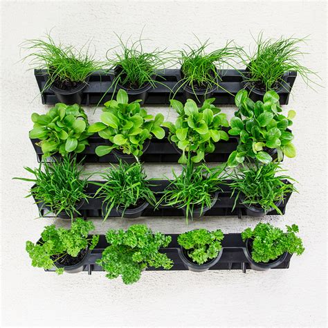 How To Plant Vertical Garden by Greenwall Pixel Pot Vertical Planting Kit Holman