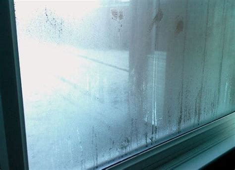 Condensation Problems In Double Glazing Timberwise