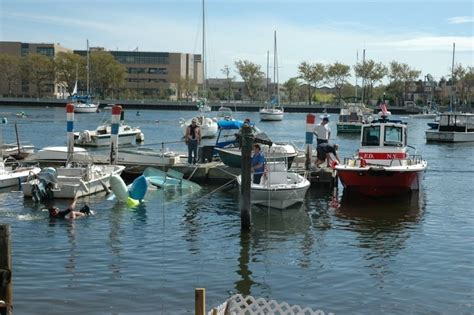 Fishing Boats Out Of Brooklyn by Sail Brooklyn Salvaging In Sheepshead Bay Or Cleaning Up