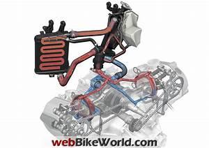Engine Coolant System  Engine  Free Engine Image For User