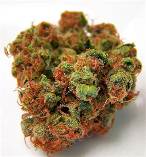 red hairs medical marijuana strains