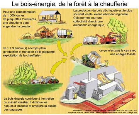 l énergie à la cuisine bois forêts et carbone en enjeux et perspectives