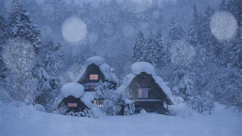 wallpaper japan shirakawa  village houses trees