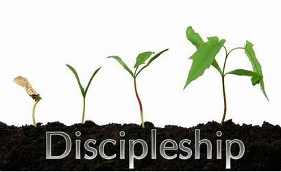 Discipleship Clipart Grow Disciple Church Christianity Christian