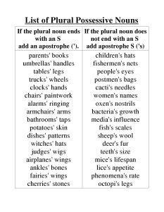 plural possessive noun
