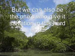 What YOU can do... Amazon Jungle Quotes
