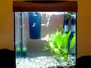 Liter Berechnen Aquarium : aquarium tetra aquaart 30 litres 10 gallons youtube ~ Themetempest.com Abrechnung