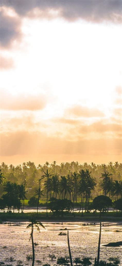 Sunrise Phone Wallpaper 1080x2340 028