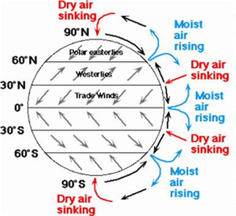 what makes the wind factors affecting winds patterns schoolworkhelper