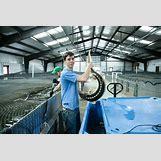 Caviar Harvesting   1200 x 800 jpeg 202kB