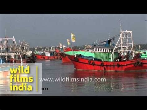 Fishing Boat In Kerala by Fishing Boats In Harbour Kerala