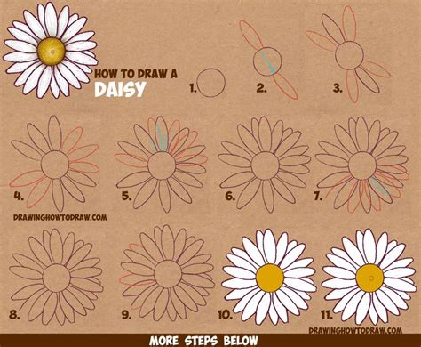 39 best images about drawing flowers plants fruits
