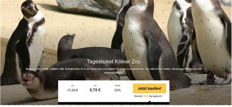 groupon kölner zoo zoo k 246 ln gutschein g 252 nstig wie 2 f 252 r 1 tagesticket