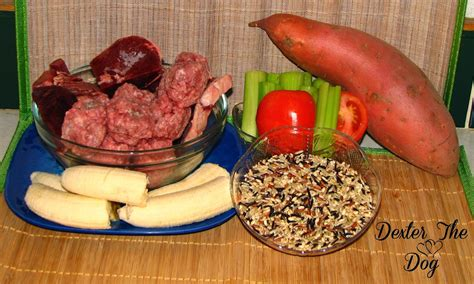 home cooking  dogs healthy home cooked dog food recipes