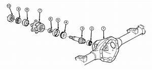14-bolt Pinion Assembly