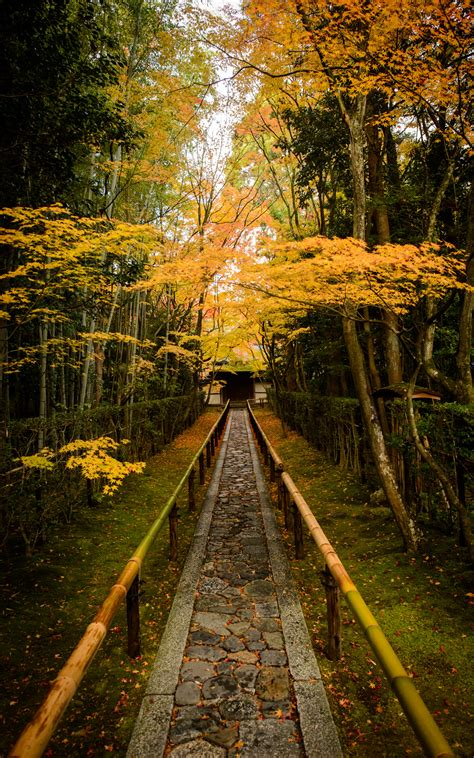 jeffrey friedls blog  amazing entrance path