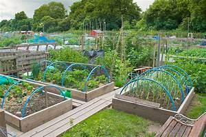 Large Backyard Vegetable Garden Home Design With DIY Wood ...