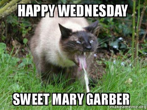 Happy Wednesday Meme - happy wednesday sweet mary garber make a meme