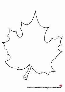 Dibujos de hojas de arboles para colorear y para imprimir