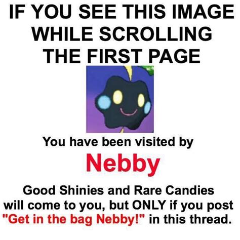 Nebby Memes - quot get in the bag nebby quot get in the bag nebby know your meme