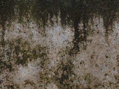 grunge  dirt texture photo gallery