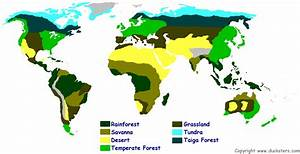 Science For Kids World Biomes And Ecosystems