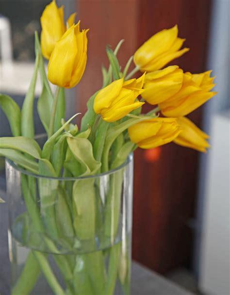 Welche Vase Für Tulpen by Tulpen F 252 R Die Vase Richtig Anschneiden Mein Sch 246 Ner Garten