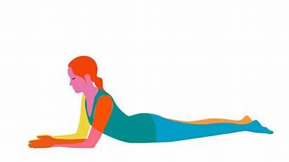 Yoga Postures Yin Beginner Sphinx Dystonia