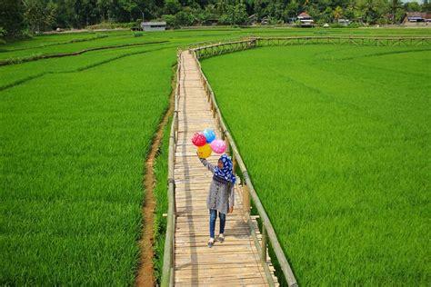 jembatan sawah sukorame bantul paket wisata jogja