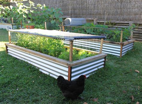 build raised garden bed how to make a raised bed garden large and beautiful